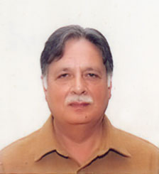 Pervaiz critisizes pakistan peoples party leadership