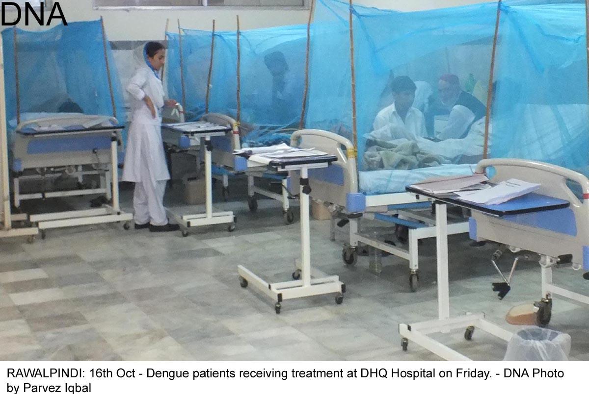 59 fresh dengue cases in Rawalpindi take total to 4,501