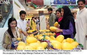 ISLAMABAD, AUG 03:  Visitors taking interest in different breed of mangoes at a stall on the occasion of three days Mango Festival at The Centaurus.=DNA PHOTO