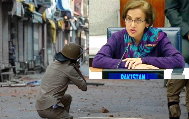 Indian allegations threat to regional peace, Janjua tells foreign envoys