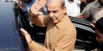 LHC orders to release Shehbaz Sharif on bail