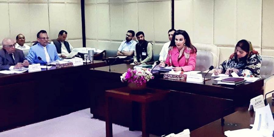 CPEC Committee Pic June 13 2019