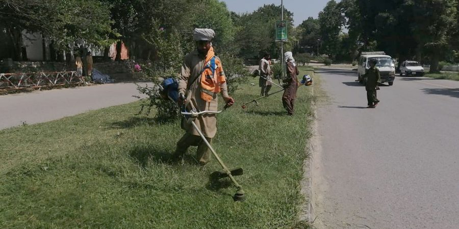 ISLAMABAD, SEPT 9 (DNA) - CDA staff removing wild growth from various sectors, on Monday. DNA PHOTO